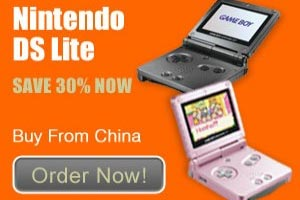 nintendo ds china